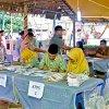 Wakil Gubernur Sumatera Utara Musa Rajekshah meninjau berlangsungnya Pemilihan Umum (Pemilu) 2019 di Tempat Pemungutan Suara (TPS) 02, Kelurahan Pekan, Kecamatan Tanjung Morawa, Kabupaten Deli Serdang